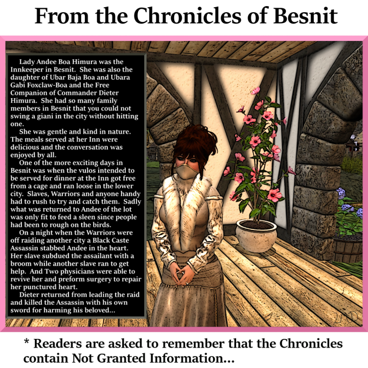 chronicle-of-besnit-011