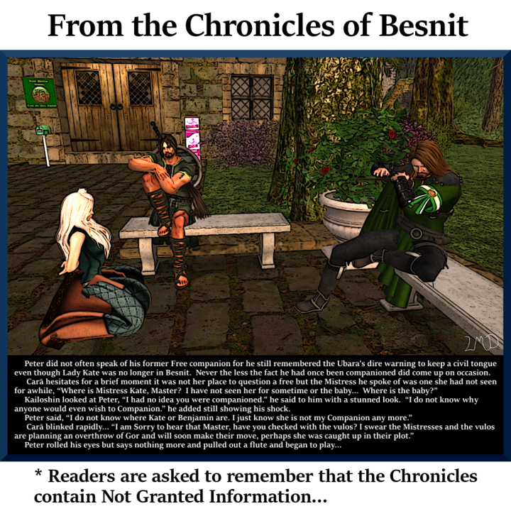 chronicle-of-besnit-012