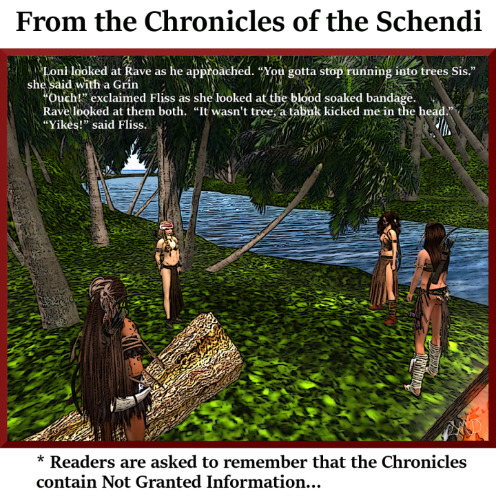 chronicle-of-the-schendi-009