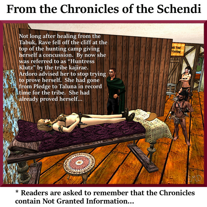 chronicle-of-the-schendi-012