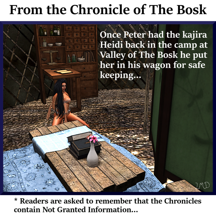 chronicle-of-the-bosk-001